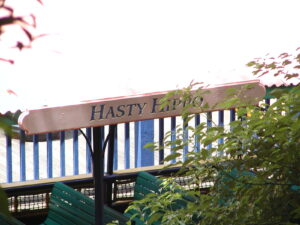 Hasty Hippo seen through the trees