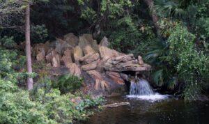 Stone Dragon - Water runoff from Camp Minnie-Mickey