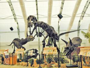 1999 Dinosaur Jubilee T-Rex Skeleton